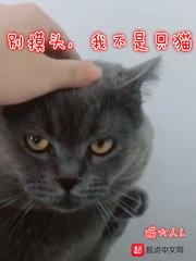 别摸头,我不是只猫