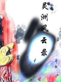 灵洲风云录